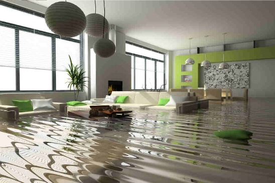 Water Damage Repair | Evergreen Carpet Care